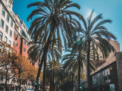 BREXIT: El dilema al que se enfrenta la Costa del Sol